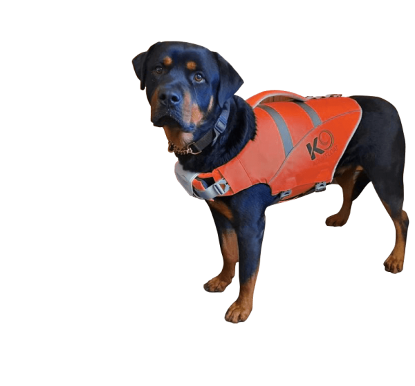 The Red K9 Aquafloat Dog Life Jacket